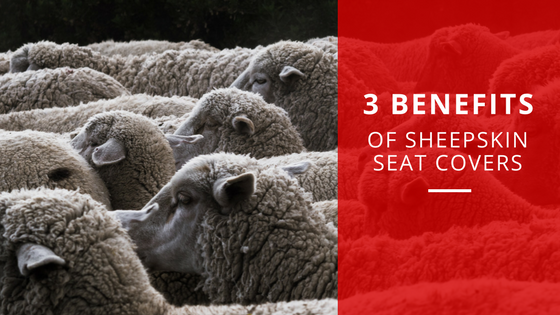 Benefits of Sheepskin Seat Covers