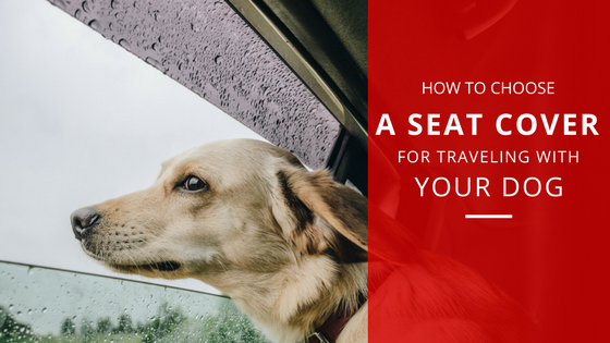 How to Choose Seat Covers when travelling with your Dog